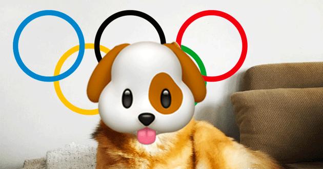 nova chienne jeux olympiques