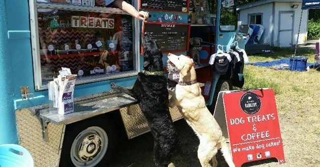food truck chiens