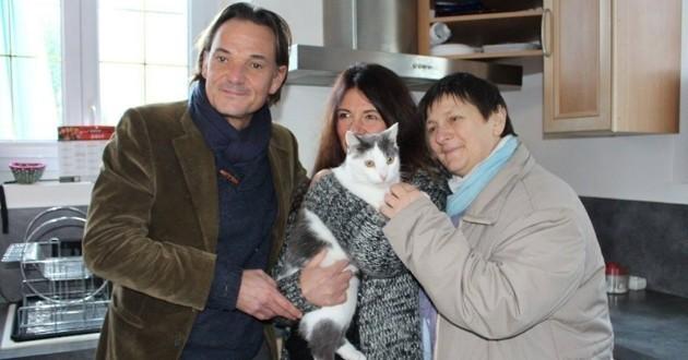 Toni chat retrouvé 2 ans après sa disparition