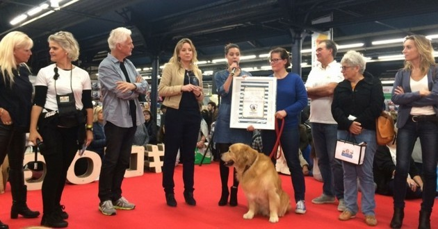 trophées pet friendly à la française animal expo animalis show