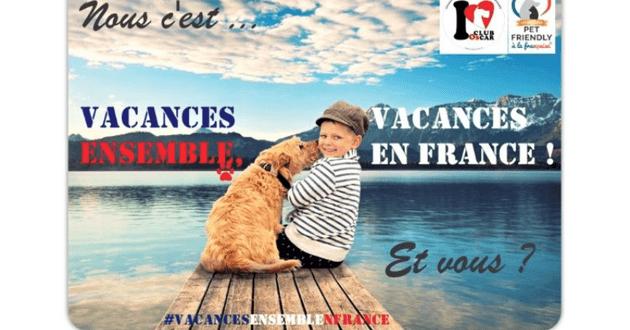Carte postale de la campagne avec un chien et un enfant assis sur un ponton au bord d'un lac