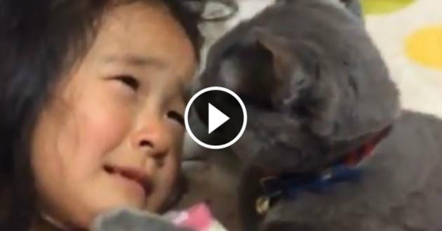 chat calin fillette