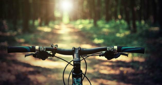 vélo dans la foret
