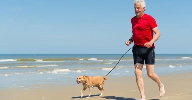 homme âgé senior chien