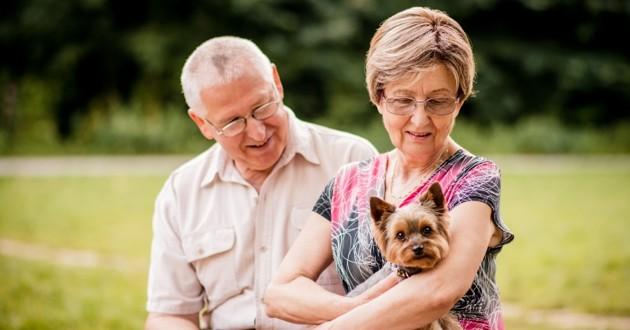 Seniors et leur chien