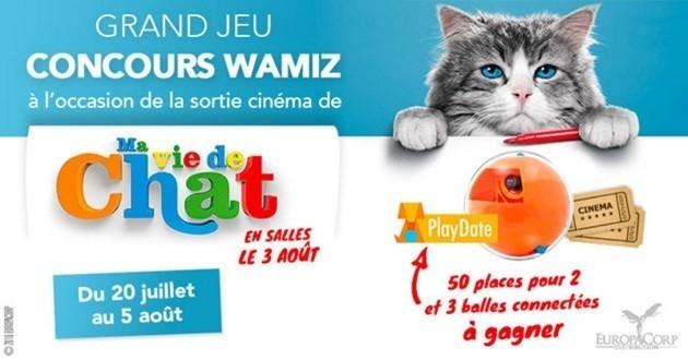 qui sont les grands gagnants du jeu concours ma vie de chat loisirs wamiz. Black Bedroom Furniture Sets. Home Design Ideas