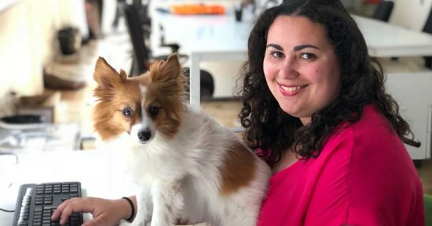 chien au bureau wamiz
