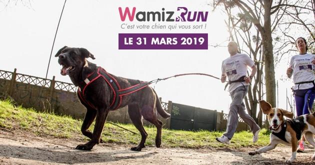 wamiz run équipement cani-cross