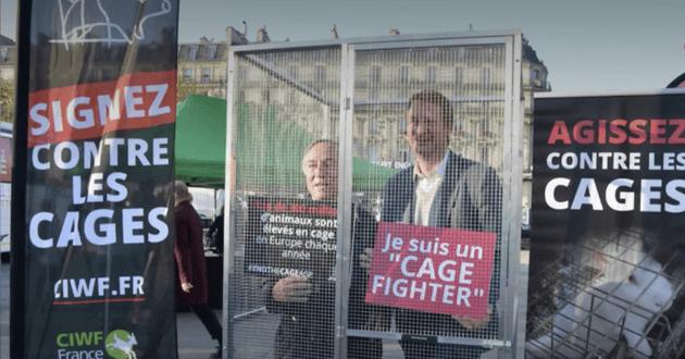 yannick jadot dénonce les élevages des animaux dans une cage