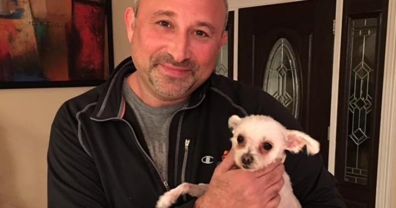3 ans après sa disparition, une chienne est retrouvée a plus de 1700 kilomètres de chez elle
