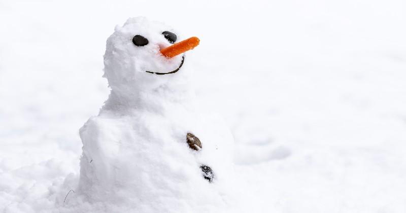 https://static.wamiz.com/images/news/facebook/bonhomme-de-neige-fb-5feb0299a2972.jpg
