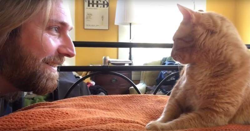 Pour se venger de son chat, il le réveille lorsqu'il dort !