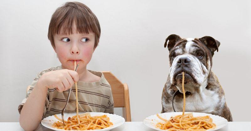 Ce chien et son maître font la course pour manger un plat de pâtes (Vidéo)