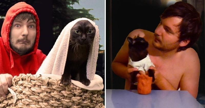 Accompagné de ses chats, ce couple recréé les scènes de films célèbres