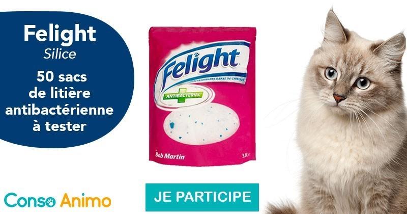Testez la litière antibactérienne en silice Felight pour chat !