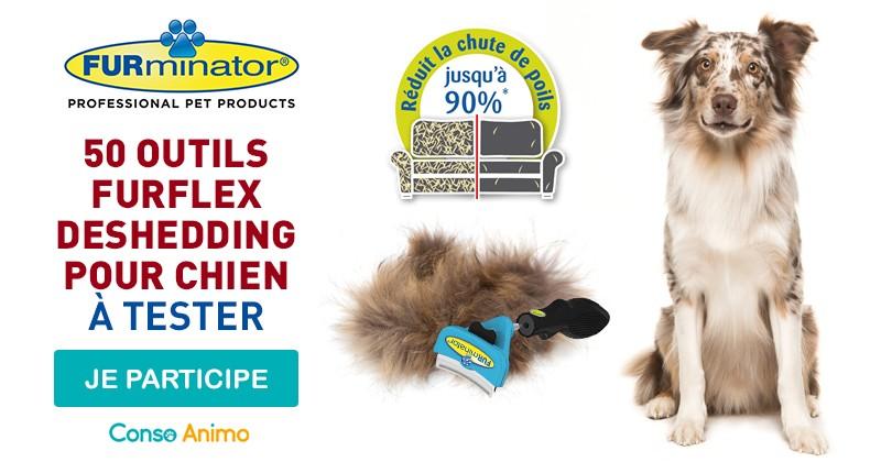 Testez l'outil Furflex Deshedding de Furminator pour votre chien !