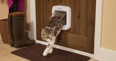 Bon plan Amazon : - 28% sur la chatière à puce électronique PetSafe