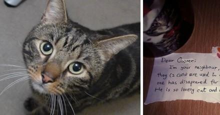 Dévasté après que son chat a été tué par une voiture, il reçoit la plus touchante des lettres