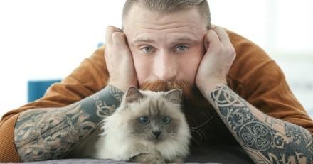 Quel est le propriétaire idéal du chat ?