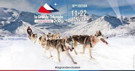 La Grande Odyssée Savoie Mont Blanc 2020 : la course de chien de traineau qui va vous en mettre plein les yeux !