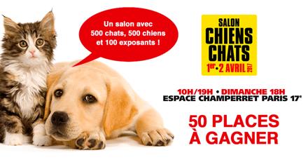 Concours : gagnez votre place pour l'édition 2017 du salon Chiens Chats !