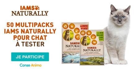 Testez les sachets fraîcheur pour chat de IAMS Naturally !