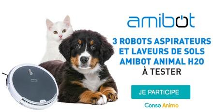 Testez le robot aspirateur Amibot Animal H2O avec votre chien ou chat