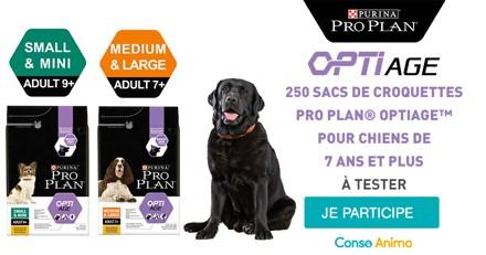 Participez gratuitement au programme d'essai 30 jours Pro Plan® Optiage avec votre chien de plus de 7 ans