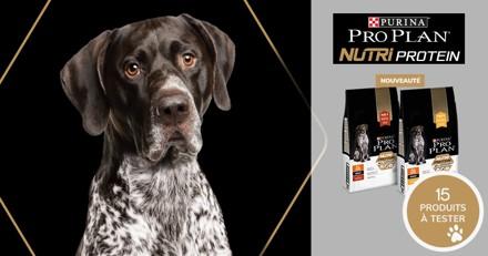 Testez les croquettes PRO PLAN® NUTRIPROTEIN avec votre chien