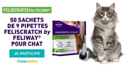 Testez avec votre chat FELISCRATCH by FELIWAY® !