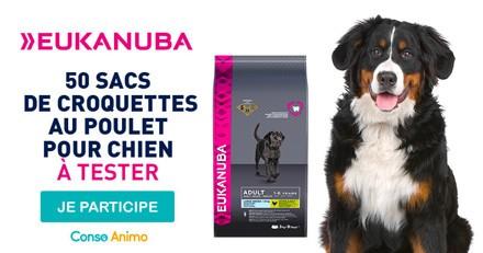Testez les croquettes pour chien Adult Large Breed d'Eukanuba !