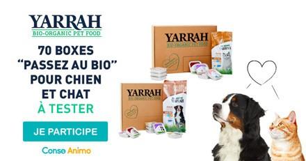 Testez la box « passez au bio » pour chien et chat de Yarrah !