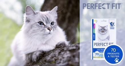 Testez le Soin Dentaire Quotidien PERFECT FIT avec votre chat