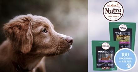 Testez les croquettes Nutro™ Wild Frontier™ avec votre chien