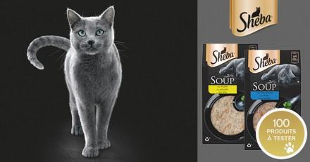 Testez l'alimentation SHEBA® Soupes avec votre chat !