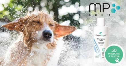 Testez le Shampoing Doux PHYTOBIOVET avec votre chien !