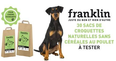 Testez les croquettes Franklin au poulet, à la patate douce et aux herbes avec votre chien