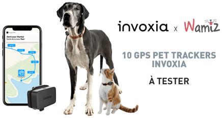 Testez le GPS Pet Tracker Invoxia avec votre chien ou chat
