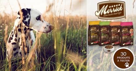 Testez les croquettes Merrick Grain Free Recipe avec votre chien