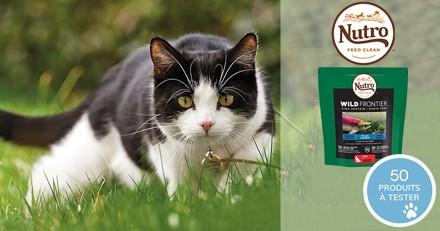 Testez les croquettes Nutro Wild Frontier au saumon et poissons blancs avec votre chat