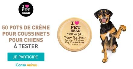 Testez la crème pour coussinets Pet Head Paw Butter pour votre chien !