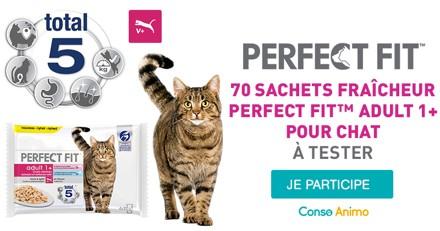 Testez les sachets fraîcheur Perfect Fit Adult 1+ avec votre chat