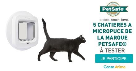 Testez la chatière à micropuce de la marque PetSafe avec votre chat !