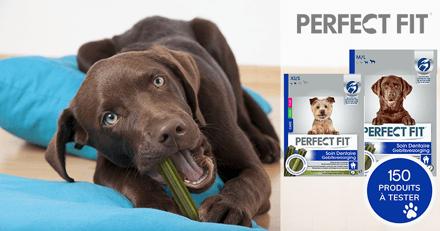 Une nouvelle chance pour tester PERFECT FIT™ Soin Dentaire avec votre chien