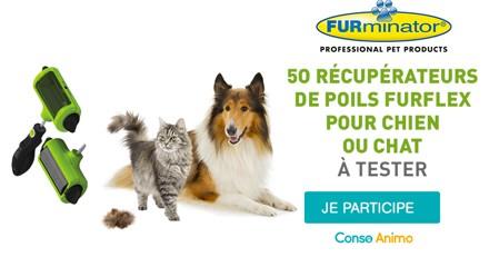 Testez le récupérateur de poils FURflex avec votre chien ou chat !