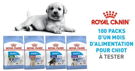 Testez les croquettes Royal Canin Puppy avec votre chiot