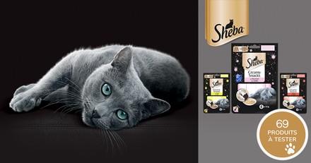 Testez les friandises Sheba® Creamy Snacks avec votre chat