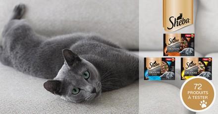 Testez les sachets fraîcheur Sheba® Les Créations avec votre chat