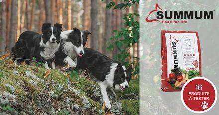 Testez la nourriture déshydratée Summum Original avec votre chien