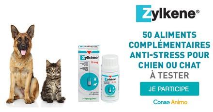 Testez l'aliment complémentaire anti-stress Zylkene Gélules avec votre chien ou chat !